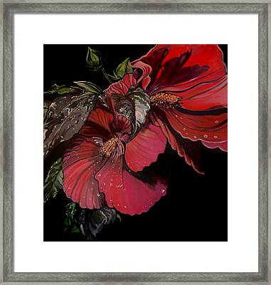 Hibiscus After The Rain Framed Print