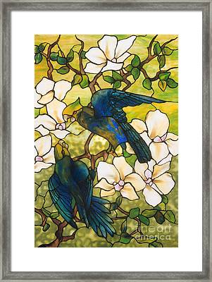 Hibiscus And Parrots Framed Print