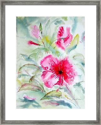 Hibiscus Fantasy Framed Print