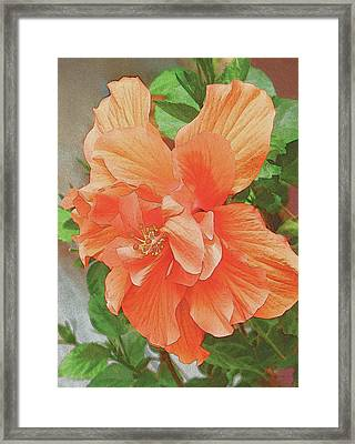 Framed Print featuring the painting Hibiscus Flower by John Dyess