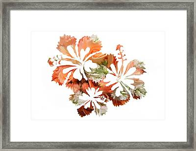 Hibiscus Flowers Framed Print by Art Spectrum