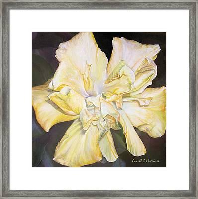 Hibiscus Jaune Framed Print by Muriel Dolemieux