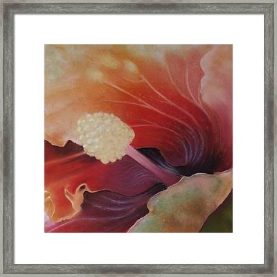 Hibiscus Macro Framed Print