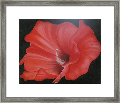 Hibiscus Melody Framed Print