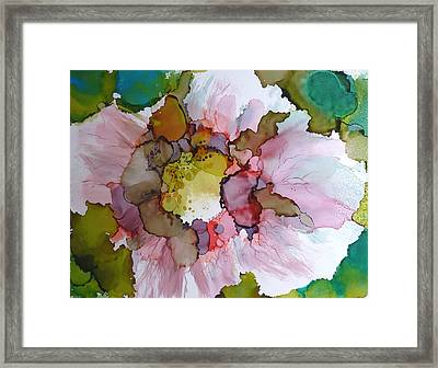 Hibiscus Framed Print by P Maure Bausch