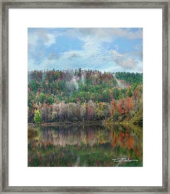 Hickory Forest Framed Print