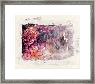 Hidden Beauty Framed Print by Rachel Christine Nowicki