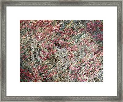 Hidden Berries Framed Print by Eileen Shahbazian