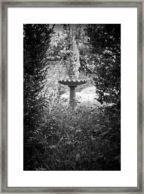 Hidden Bird Bath  Framed Print