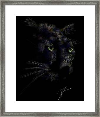 Hidden Cat Framed Print