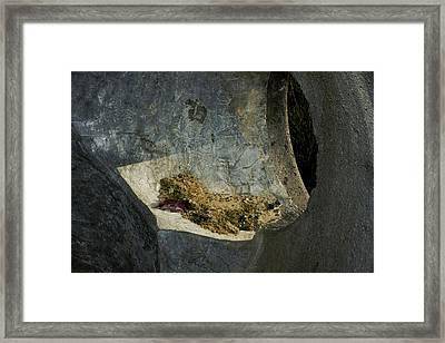Hidden Depths Framed Print