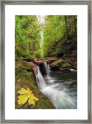 Hidden Falls At Rock Creek Framed Print by David Gn