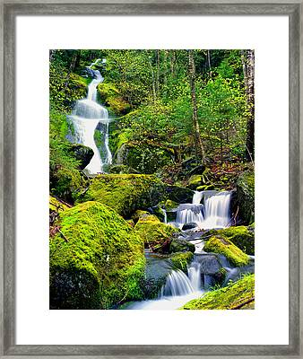 Hidden Falls Framed Print