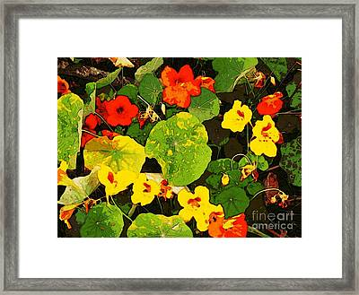 Hidden Gems Framed Print