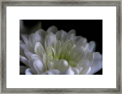 Hidden Heart Framed Print