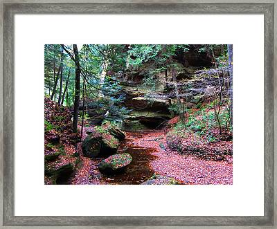 Hidden Jewel Framed Print by Vijay Sharon Govender