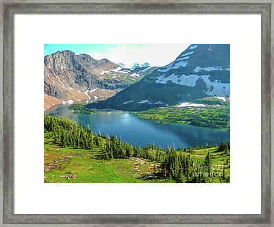 Hidden Lake Glacier National Park Framed Print