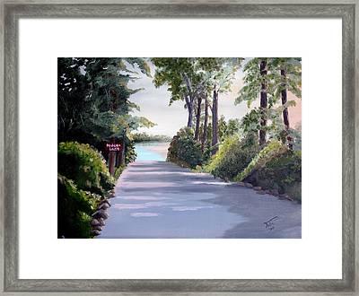 Hidden Lake Framed Print by Tobi Czumak