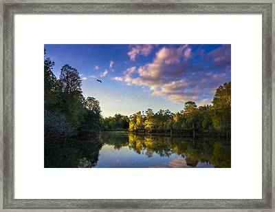 Hidden Light Framed Print by Marvin Spates