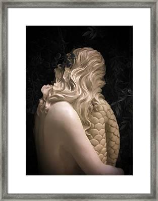 Hidden Mermaid Framed Print