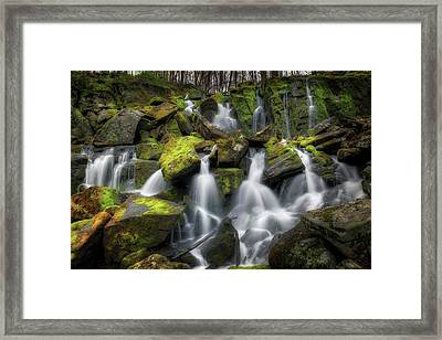 Hidden Mossy Falls Framed Print by Bill Wakeley