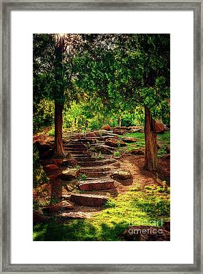 Hidden Path At Honor Heights Park Framed Print by Tamyra Ayles