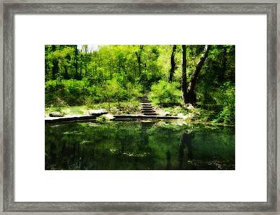 Hidden Pond At Schuylkill Valley Nature Center Framed Print