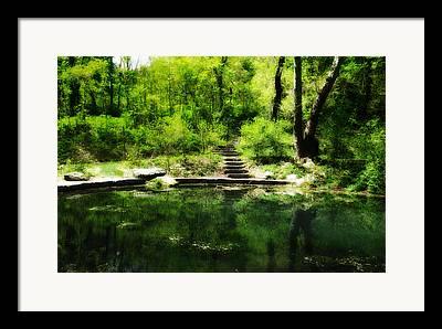 Nature Center Pond Digital Art Framed Prints