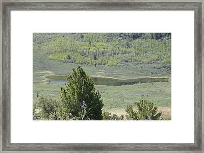Hidden Pond Framed Print by Susan Pedrini
