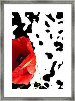 Hidden Poppy Framed Print by Martine Affre Eisenlohr