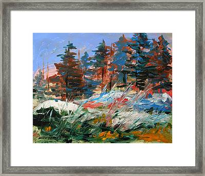 Hidden Snow Framed Print by John Williams