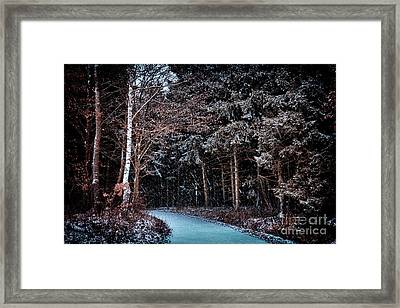 Hidden Steps At Dawn Framed Print
