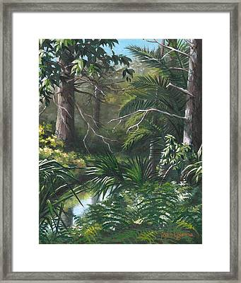 Hidden Stream At Lowry Park Framed Print