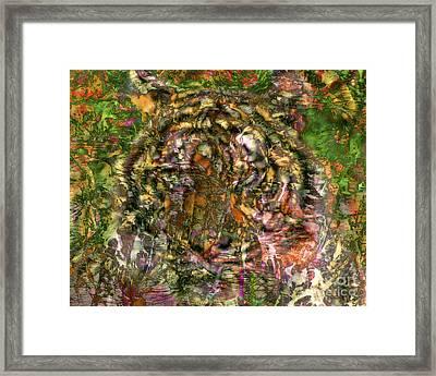 Hidden Tiger Framed Print by Chuck Brittenham