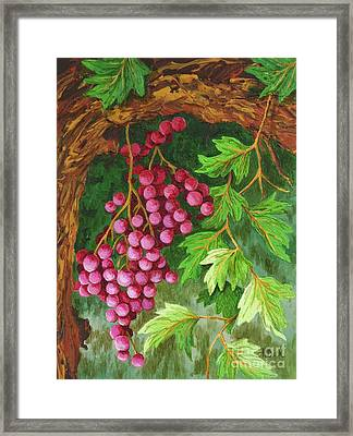 Hidden Treasure Framed Print by Katherine Young-Beck