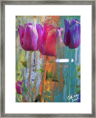 Hidden Tulips Framed Print by  Cid