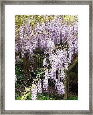 Hidden Under The Arbor Framed Print