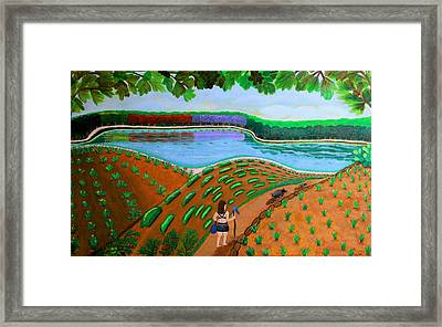 Hidden Water From Above Framed Print by Lorna Maza
