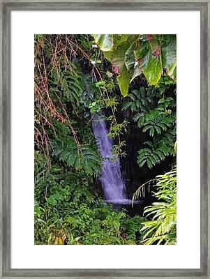 Small Hidden Waterfall  Framed Print