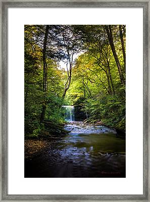 Hidden Wonders Framed Print