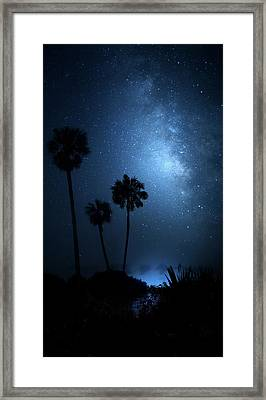 Framed Print featuring the photograph Hidden Worlds by Mark Andrew Thomas