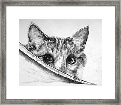 Hide N Seek Framed Print by Susan A Becker