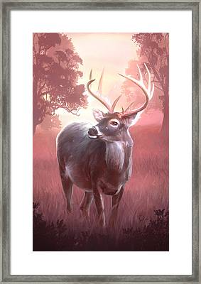 In The Wilderness Framed Print