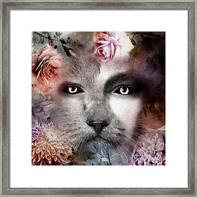Hiding Catlady Framed Print