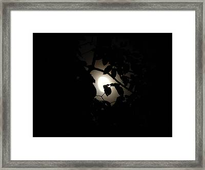 Framed Print featuring the photograph Hiding - Leaves Over Moon by Menega Sabidussi