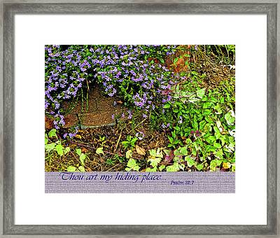 Hiding Place Framed Print by Larry Bishop