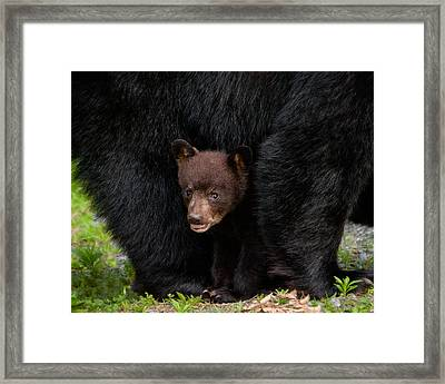 Hiding Under Mom Framed Print