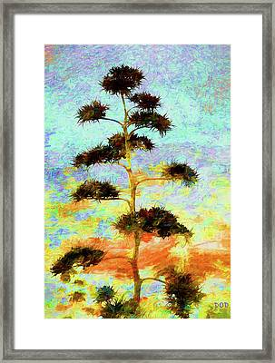 High Above The City Framed Print by Declan O'Doherty