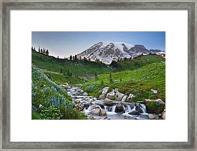 High Alpine Summer Framed Print by Thorsten Scheuermann