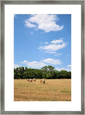 High As The Sky Framed Print